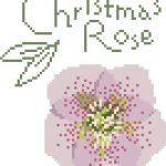 クリスマスローズのデザインです。2009年